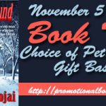 Lost and Found Book Blast
