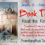 Scattered links by by Michelle Weidenbenner