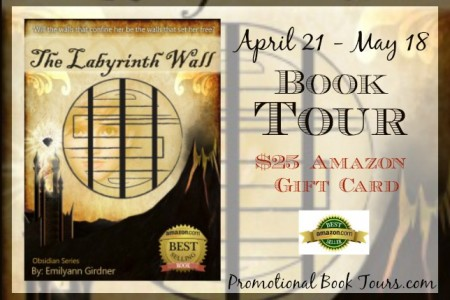 The Labyrinth Wall by Emilyann Girdner #BookBlast