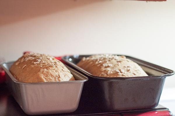 Buttermilk Oatmeal Bread Plain-11