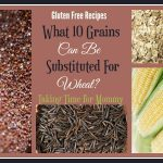 Gluten Free Recipes – What 10 Grains Can Be Substituted For Wheat?
