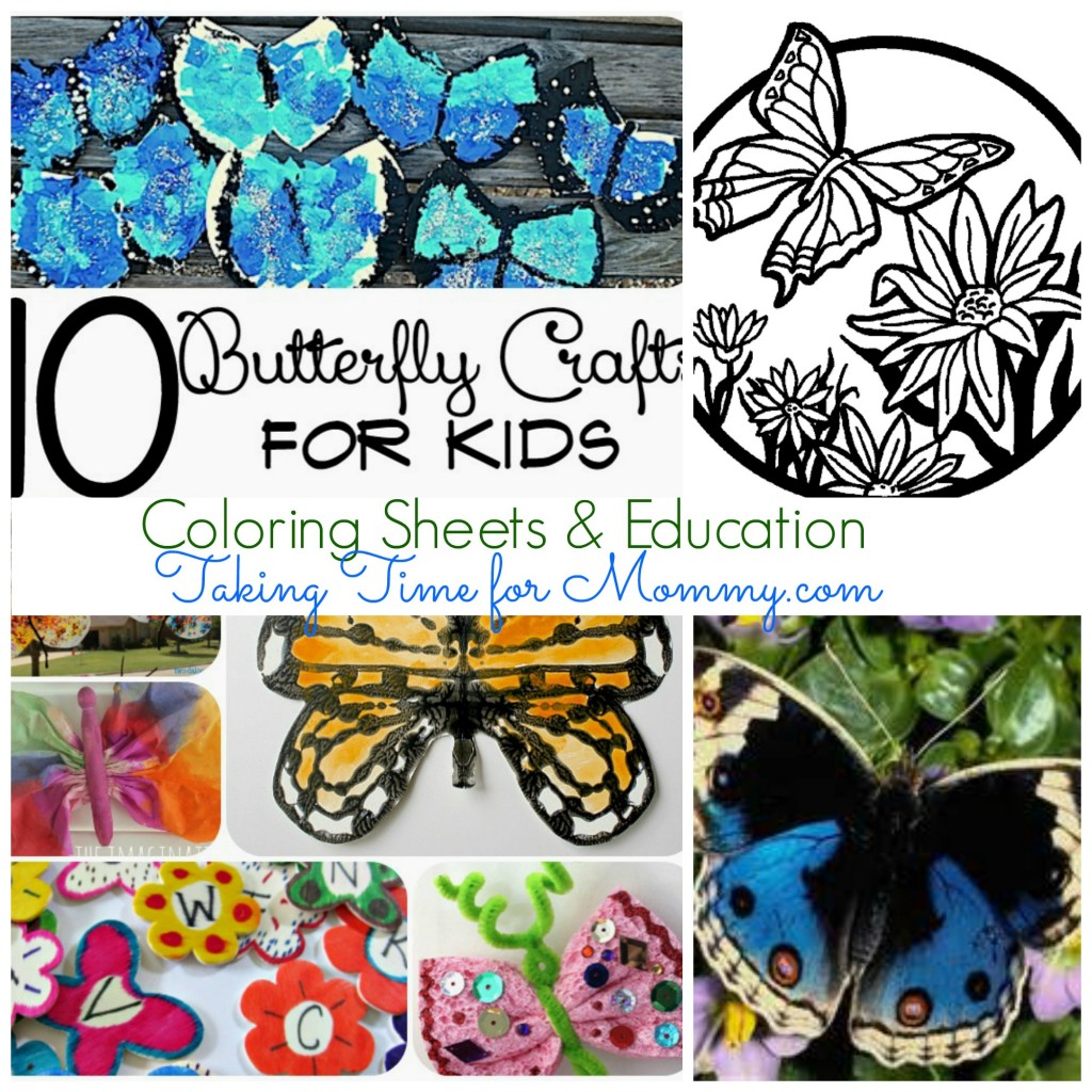 ButterflyCollage