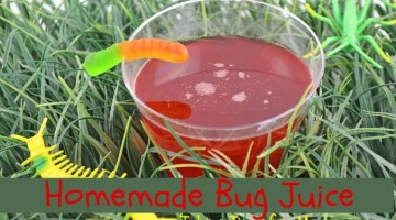 homemadebugjuice