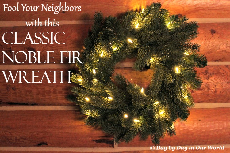 Fool-Your-Neighbors-with-the-Classic-Noble-Fir-Wreath-from-Tree-Classics