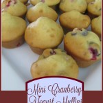 Mini Cranberry Yogurt Muffins
