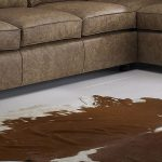 The Naturally Stylish Cowhide Rug