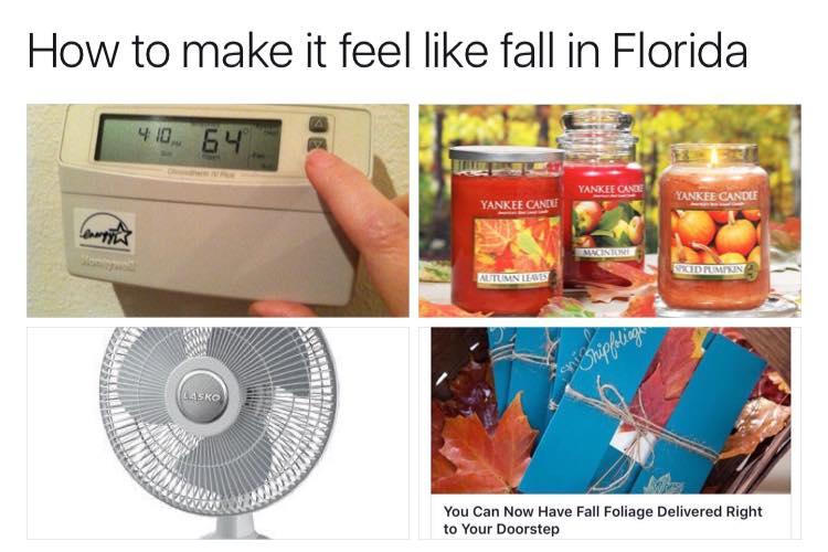 fallinflorida