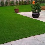 5 Tips to caring for artificial grass