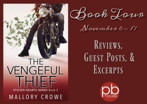 The Vengeful Thief (Stolen Hearts) Book Review