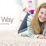 5 TIPS TO FINDING THE BEST CARPET CLEANERS IN SCOTTSDALE ARIZONA