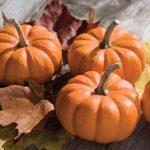 Fresh Pumpkin As a Highly Rejuvenating Anti-Aging Facial