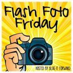 #FlashFotoFriday Theme My Point of View