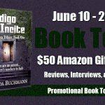 Indigo Incite Book Tour #BookReview