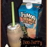 Orange Scream TruMoo Boo-Berry Smoothie Recipe #TrooMooTreats