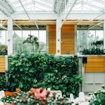 4 Tips to buying accessories for your greenhouse