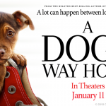 A Dog's Way Home Movie Release and Giveaway